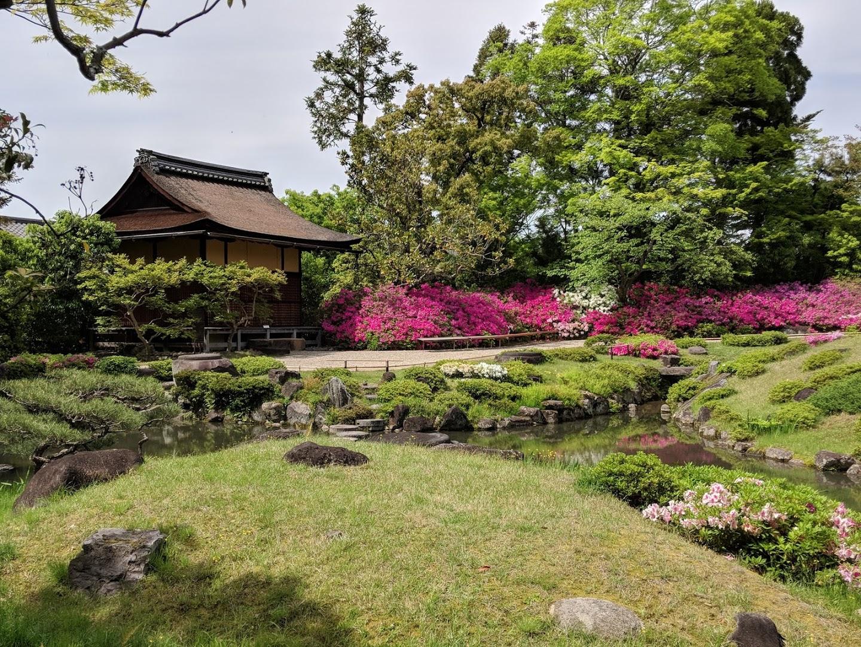 JAPAN 2018 – OSAKA, KYOTO & TOKYO