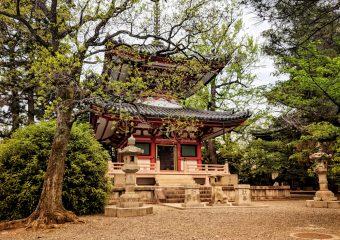 PLANNING JAPAN 2020